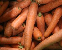 Close up of fresh carrot on the market stall. Background texture. Close up of fresh carrot on the market stall. Chaotic backdrop, view top. Background texture of stock photo