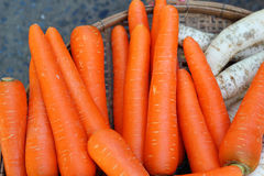 Close-up of the fresh carrots. Royalty Free Stock Image