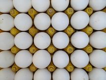 Fresh chicken eggs at Indian Street Market. Close-up of fresh chicken eggs for sale at Indian street market Royalty Free Stock Images