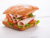 Close up of fresh club sandwich Stock Image