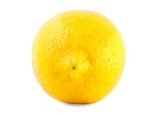 Close-up of fresh, colourful, ripe lemon,  on a white background. A whole nutritious yellow citrus fruit, full of vitamins Royalty Free Stock Photos