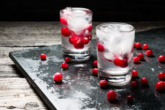 Close-up with fresh cranberries, glass of Russian vodka and ice cubes on black background  water drops Stock Photography