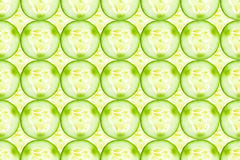 Close up of fresh cucumber slices background. Close up of fresh cucumber slices Stock Images