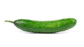 Close up of fresh cucumber. Royalty Free Stock Photos