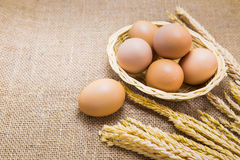 Close up fresh eggs in basket and sackcloth background Stock Photos