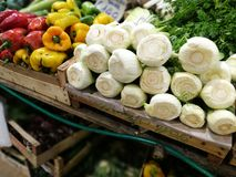 Fennel bulbs at farmers market in Rome Royalty Free Stock Image