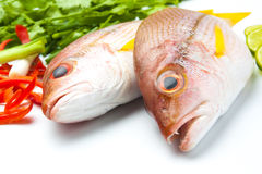 Close-up fresh fish fillet with aromatic herbs spices. And vegetables healthy Royalty Free Stock Photo