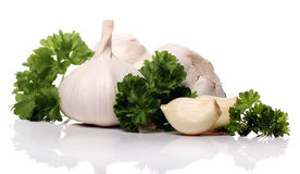 Close up of Fresh garlic Stock Images