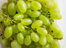 Close-up of fresh grape Royalty Free Stock Photos