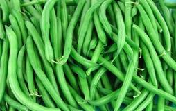 Close up on fresh green bean for design Stock Photos