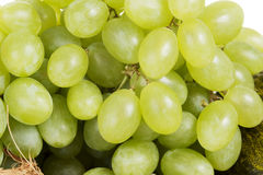 Close up on fresh green grapes. Stock Photo