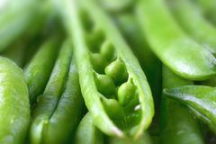 Close-up of fresh green pea pods with water drops. Royalty Free Stock Photos
