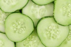Close up fresh green sliced cucumber Stock Image