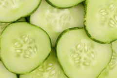 Close up fresh green sliced cucumber Royalty Free Stock Image