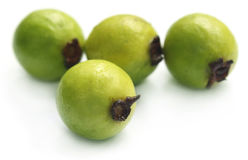 Close up of fresh guava Stock Photo