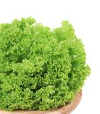 Close up of Fresh lettuce on wooden platter Stock Photography