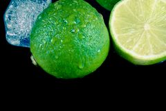 Close-up of fresh lime with ice cubes Royalty Free Stock Photography