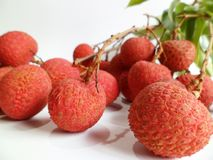 Lychee (Litchi chinensis) Stock Image