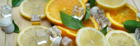 Close Up of Fresh Orange Lemon Sea Shells Leaves Cube Ice Summer Stock Photo