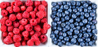 Close up Fresh Organic  Blueberries and Raspberries. Rich with vitamins Background, texture Royalty Free Stock Image