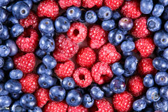 Close up Fresh Organic  Blueberries and Raspberries. Rich with vitamins Background, texture Royalty Free Stock Photo