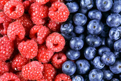 Close up Fresh Organic  Blueberries and Raspberries. Rich with vitamins Background, texture Stock Photography