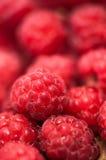 Close-up of fresh, organic raspberry stock image