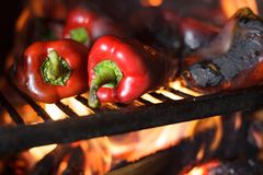 Preparing traditional Balkan`s delicacy Ajvar, grilling paprika on an open flame. Close-up of fresh organic red paprika being grilled on open flame. Preparing stock images