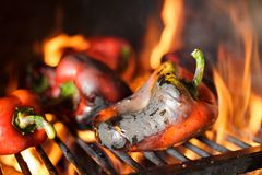 Preparing traditional Balkan`s delicacy Ajvar, grilling paprika on an open flame. Close-up of fresh organic red paprika being grilled on open flame. Preparing royalty free stock image