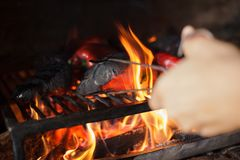 Preparing traditional Balkan`s delicacy Ajvar, grilling paprika on an open flame royalty free stock photography