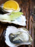 Close up of fresh oysters Royalty Free Stock Photos