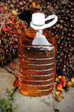 Close up of fresh Palm Oil seeds and cooking oil Stock Photos
