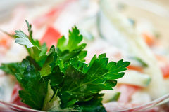 Close-up of fresh parsley in salad Royalty Free Stock Images