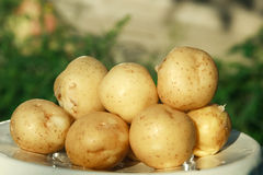 Close up fresh potatoes Stock Photos