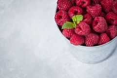 Raspberries with a mint leaf in iron bucket, cutted view Royalty Free Stock Photo