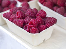 Close up fresh raspberry in a white paper box on white backgroun. D Royalty Free Stock Images