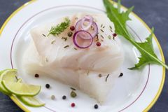 Close up Fresh raw cod fish fillet on a plate with parsley and lemon isolated on grey slate background Stock Image