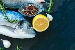 Close up of fresh raw dorado fish, rosemary herb garlic pepper a Royalty Free Stock Image