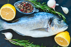 Close up of fresh raw dorado fish, rosemary herb garlic pepper a Stock Photos