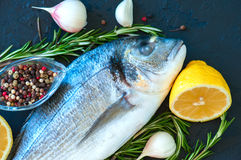 Close up of fresh raw dorado fish, rosemary herb garlic pepper a. Nd half of lemon on a black slate background. Overhead view Royalty Free Stock Photos