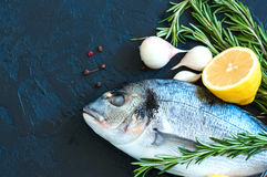 Close up of fresh raw dorado fish, rosemary herb garlic pepper a. Nd half of lemon on a black slate background. Overhead view Royalty Free Stock Image