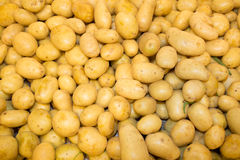 Close-up of a fresh raw potatoes background Royalty Free Stock Photos