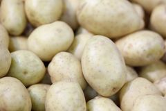 Close-up of a fresh raw potatoes background. Close-up of a fresh raw potatoes background Stock Images
