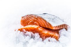 Close-up Fresh raw salmon fillets on Ice Royalty Free Stock Photos