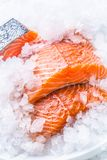 Close-up Fresh raw salmon fillets on Ice Stock Image