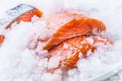 Close-up Fresh raw salmon fillets on Ice Stock Images