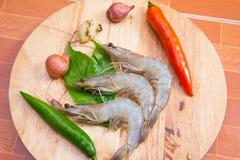 Fresh raw shrimp. Close up fresh raw shrimp Royalty Free Stock Photo