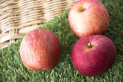 Close up fresh red apple Stock Image