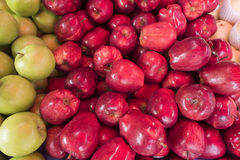 Close up fresh red apple at market Stock Image