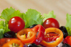Close Up Fresh Red and Green Salad Royalty Free Stock Image